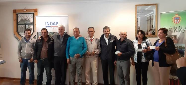 Productores de arándanos de Parral y Retiro reciben 160 millones en indemnizaciones por lluvias y granizos