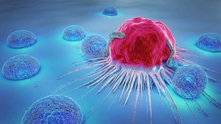UTalca anuncia investigación conjunta con Instituto de México para desarrollar nuevas terapias contra el cáncer