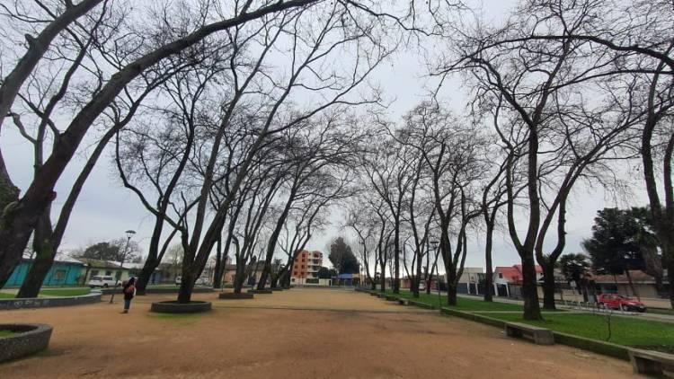 Linares llega a los 707 casos de Covid-19