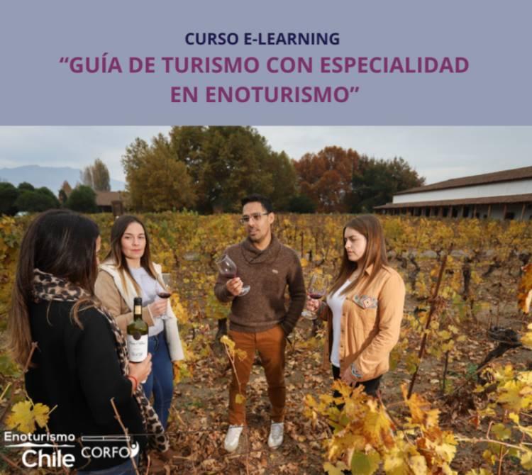 """Estudiantes de la carrera de turismo del CFT Estatal  del Maule terminaron con éxito curso de """"enoturismo"""""""