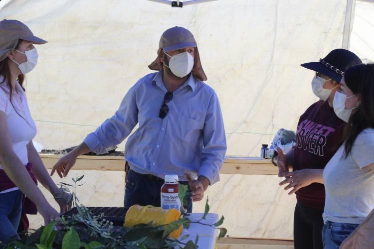 Estudiantes de fruticultura y de sistemas de riego del CFT Maule aprendieron técnicas de producción de plantas en trabajo terreno
