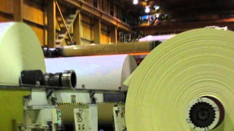 Muere un trabajador de 33 años tras caer desde una altura de 4 metros al interior de la planta CMPC Maule